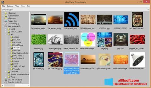スクリーンショット IrfanView Windows 8版
